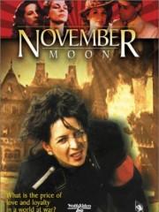 Affiche : Lune De Novembre