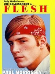 Affiche : Flesh