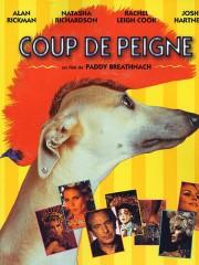 Affiche : Coup de Peigne