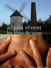 Affiche : A Quoi Rêvent Les Têtes De Veau