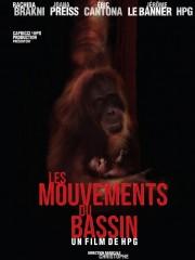 Affiche : Les Mouvements Du Bassin