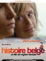 Affiche : Histoire Belge