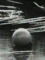 Affiche : Quand La Mer Débordait