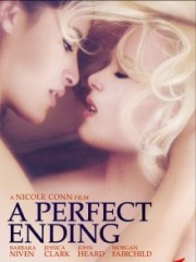 Affiche : A Perfect Ending