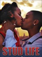 Affiche : Stud Life