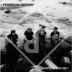Perpetual Detour - What if it was you ?